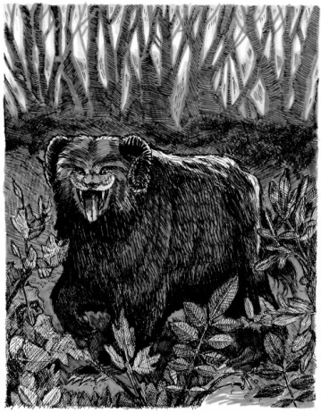 """Ozark Howler. Micro pigment ink on drawing paper. 6.5"""" x 5"""""""