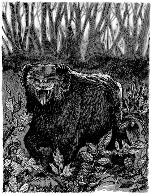 """Ozark Howler. Ink on paper. 6.5"""" x 5"""""""