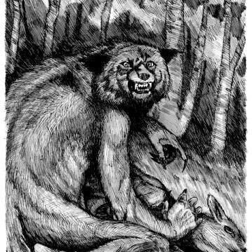 "Michigan Dog Man. Micro pigment ink on drawing paper. 6.5"" x 5"""