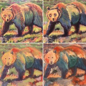 Ursus arctos progress