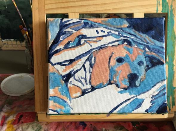 Beagle Beneath Blanket Underpainting